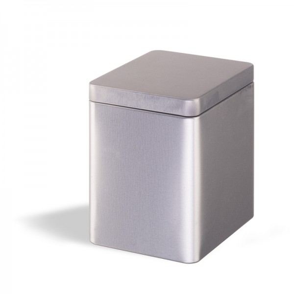 Tea Box with Slip Lid - silver