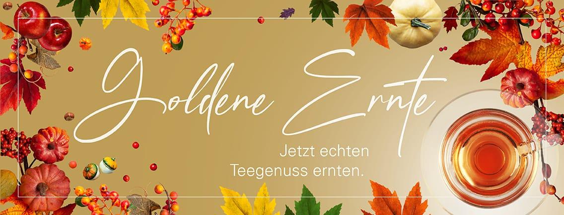 Herbstaktion_Banner_DLP_1136x433_final